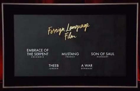 Foreign Language Film